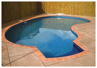 SMALL KIDNEY SHAPE POOL